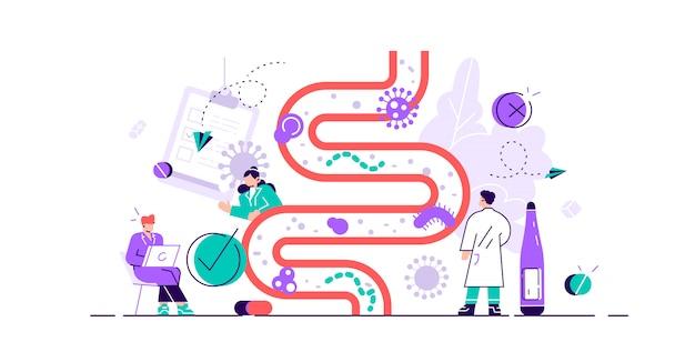 Darmflora illustratie. plat klein gastro-intestinale microbe persoon concept. abstracte spijsvertering maag levende organismen voor een gezond leven. lactobacilli, coli en darmstelsel.
