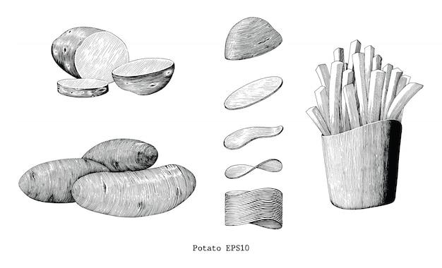 De aardappelshand trekt wijnoogst op witte achtergrond wordt geïsoleerd die
