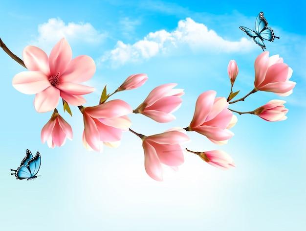 De achtergrond van de aardlente met mooie magnoliatakken en blauwe hemel. .