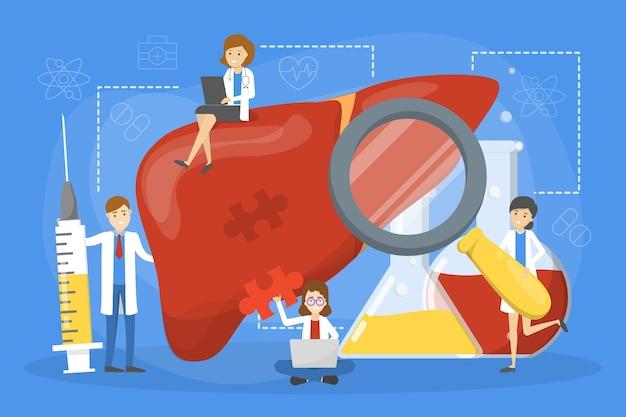 De arts maakt het concept van het leveronderzoek. idee van de gezondheid van het lichaam