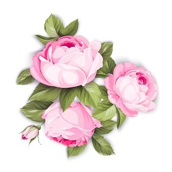 De bloeiende roos.
