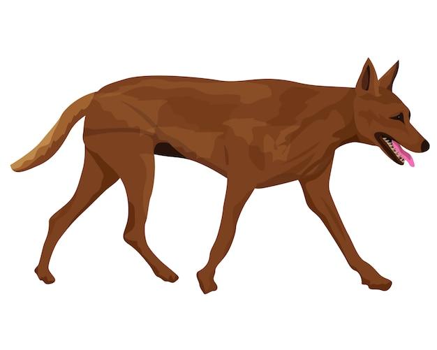 De bruine hond vector desing