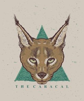 De caracal kat gezicht hand-draw illustratie