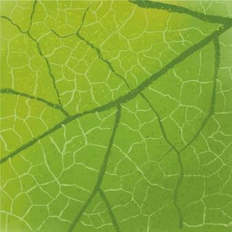 De close-uptextuur van het blad die met waterverf en kleurpotlood wordt gemaakt