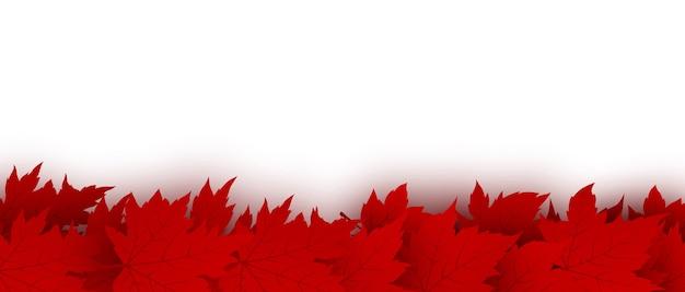 De dagachtergrond van canada van rode die esdoornbladeren op witte achtergrond worden geïsoleerd