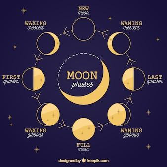 De donkerblauwe achtergrond van de fasen van de maan en de sterren