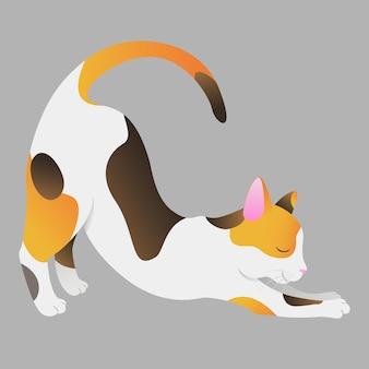 De driekleurige kat strekt zich uit goedemorgen