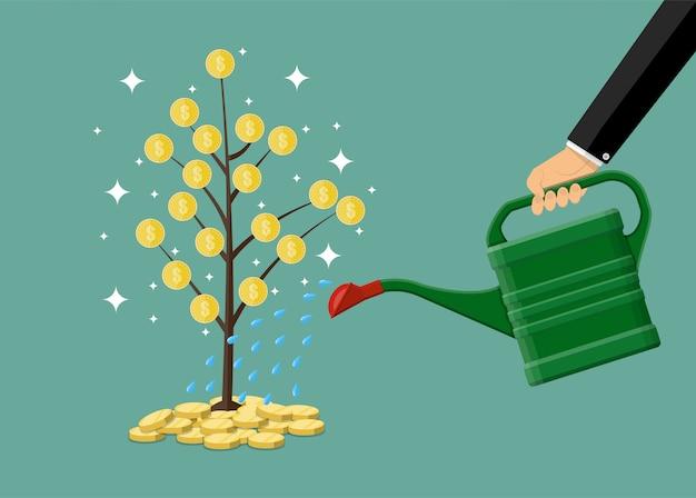 De hand die de boom van het geldmuntstuk met kan water geven