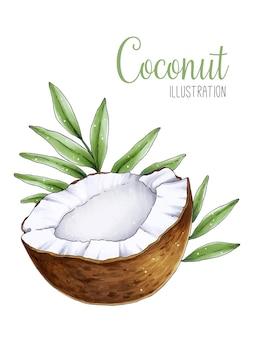 De helft van kokosnoot met groene tropische bladeren aquarel illustratie