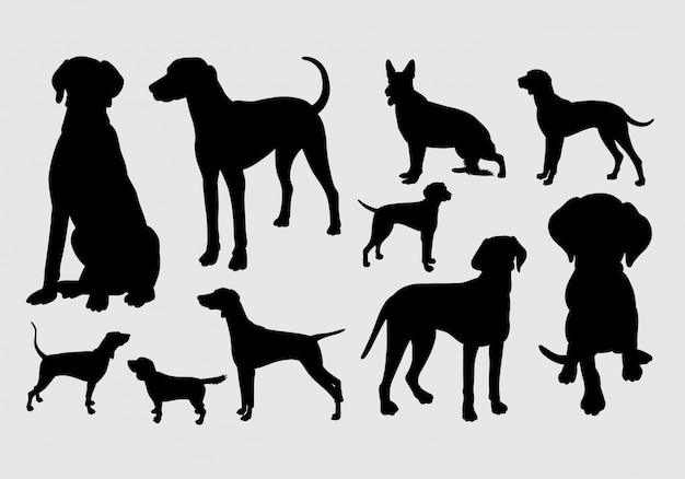 De hond en van een hond stellen silhouet