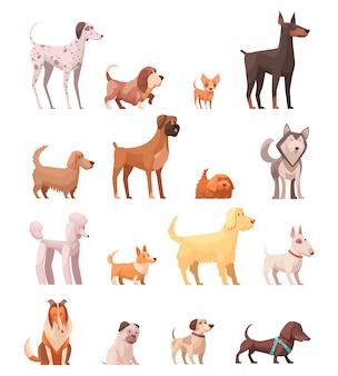 De hond kweekt retro inzameling van beeldverhaalpictogrammen met schor poedel collie herder en tekkelhond geïsoleerde vectorillustratie