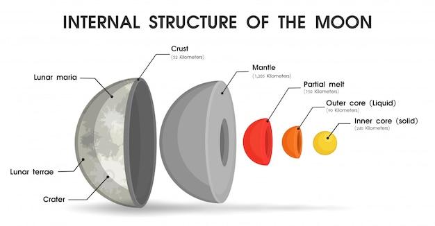 De interne structuur van de maan die is verdeeld in lagen.