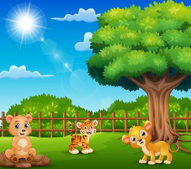 De kleine dieren genieten van de natuur bij de kooi