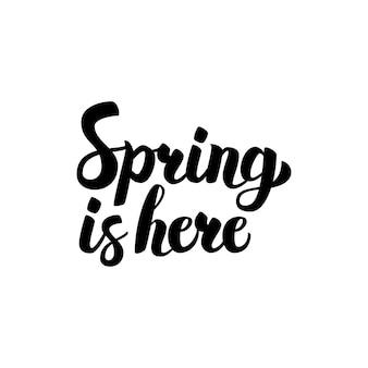 De lente is hier kalligrafie. vectorillustratie van inkt borstel belettering geïsoleerd op witte achtergrond.