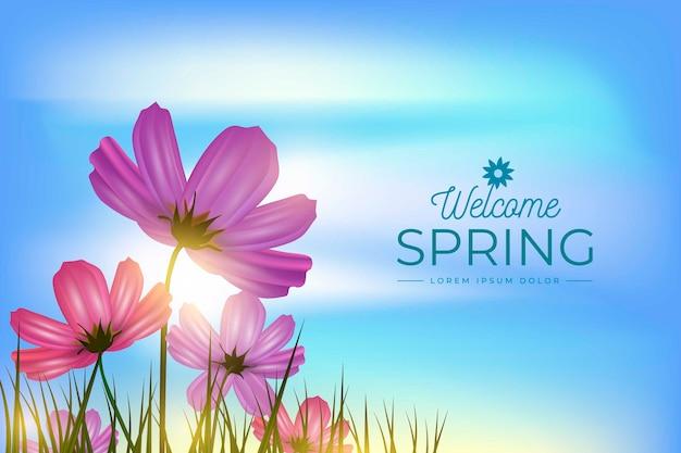 De lenteachtergrond met hemel en bloemen op het gebied