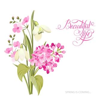 De lentetijd van kaart met bloeiende bloemen die over witte achtergrond worden geïsoleerd.