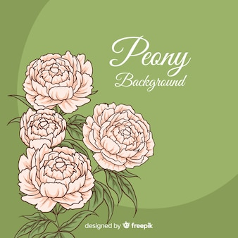 De mooie en elegante achtergrond van de pioenbloem