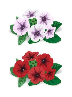 De petunia van de witte en rode bloemstruik