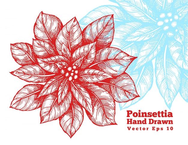 De poinsettia overhandigen getrokken rode bloem vectorillustratie.
