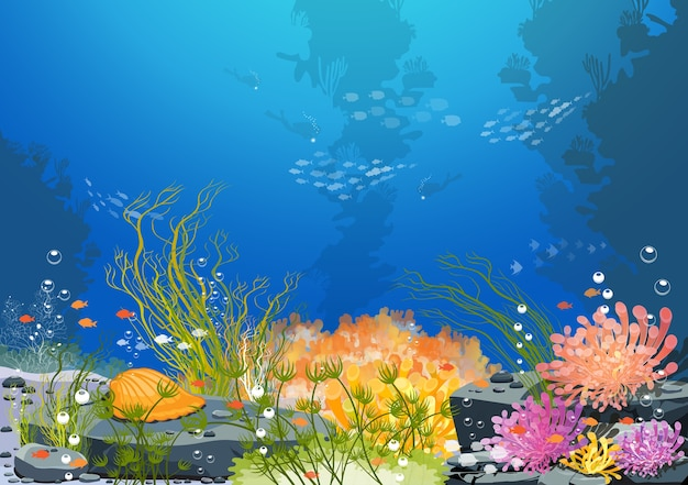 De pracht van de onderwaterwereld