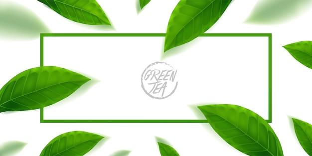 De premium groene thee voor een goede gezondheid vectorillustratie.