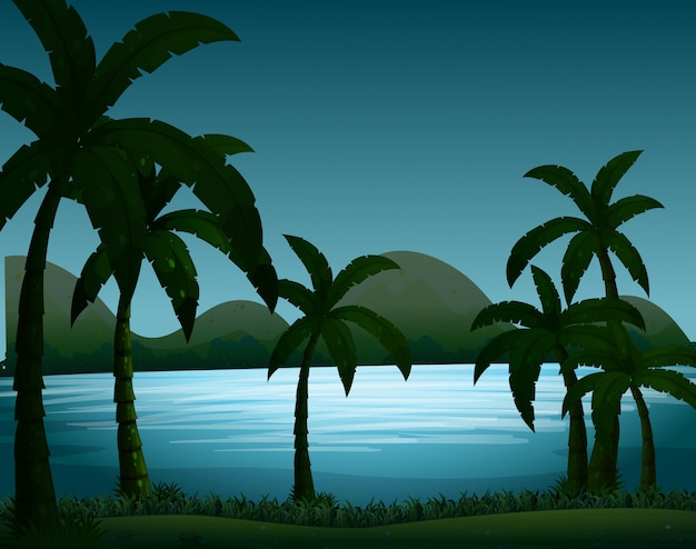 De scène van de silhouetaard met kokosnotenbomenachtergrond