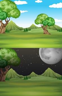 De scèneachtergrond van de aard met gebied en bomen