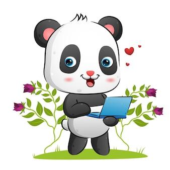 De schattige panda houdt een laptop vast om iets illustratie te presenteren