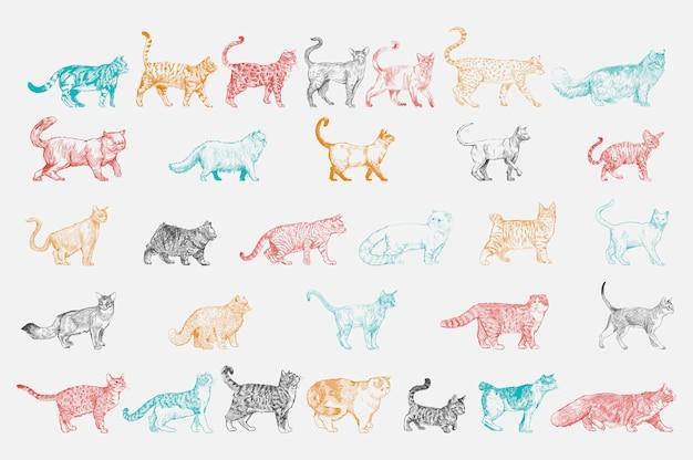 De stijl van de illustratietekening van de inzameling van kattenrassen