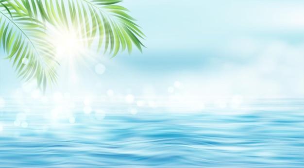 De stralen van de zon en de bladeren van de palmboom op de zee