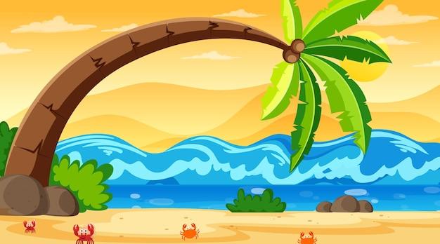 De tropische scène van het strandlandschap met een grote kokospalm