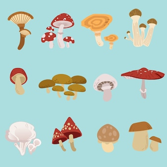 De verzameling paddenstoelenverpakkingen