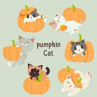 De verzameling van schattige kat met de pompoen set.