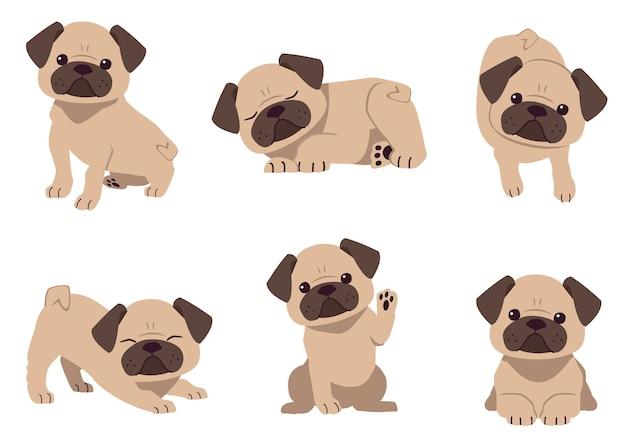 De verzameling van schattige pug dog