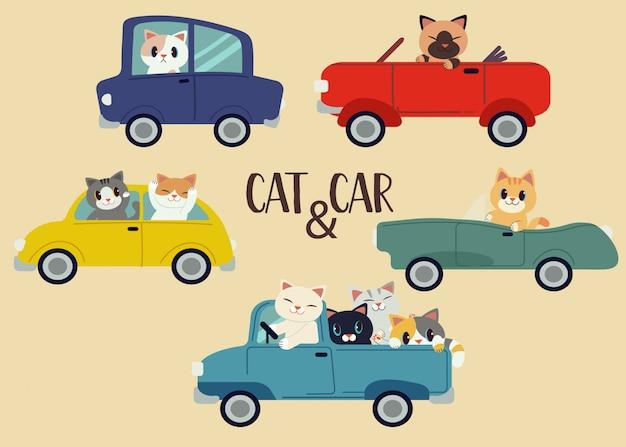 De verzameling van set kat en auto pack