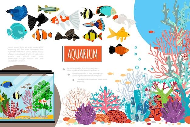 De vlakke samenstelling van aquariumelementen met exotische kleurrijke vissen, koralen, zeewierstenen en waterbellen