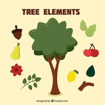 De vruchten van de boom