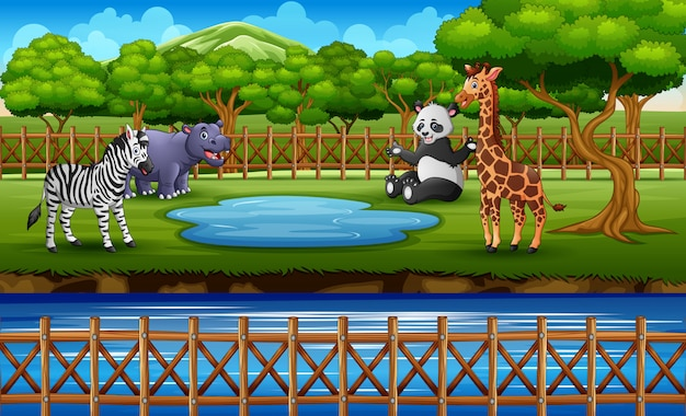 De wilde dieren in de dierentuin parkeren openluchtkooi op aard