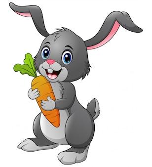 De wortel van de konijnholding op wit wordt geïsoleerd dat
