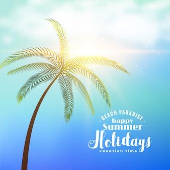 De zonnige achtergrond van de de zomervakantie met tropische boom