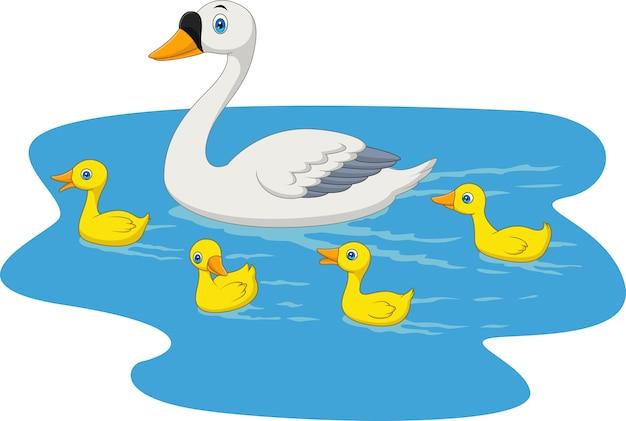 De zwaanfamilie die van het beeldverhaal in de vijver zwemt