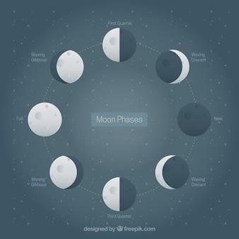 Decoratieve achtergrond met sterren en de maan fasen