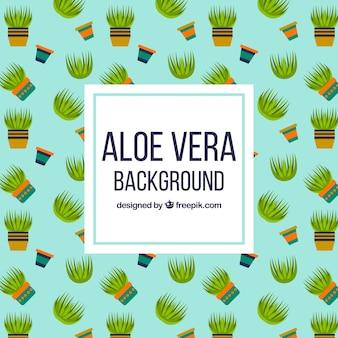 Decoratieve achtergrond van aloë vera potten in plat ontwerp