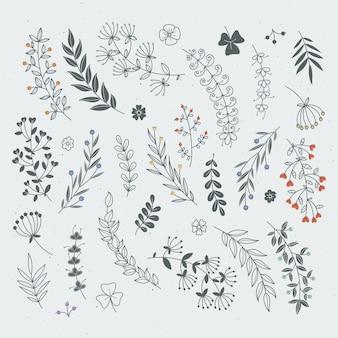 Decoratieve bloemenelementen voor ontwerpprojecten