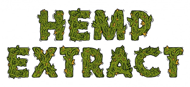 Decoratieve groene marihuana lettertype met geïsoleerde belettering ontwerp.