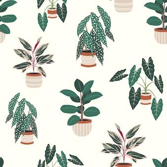 Decoratieve kamerplanten in potten naadloos patroon