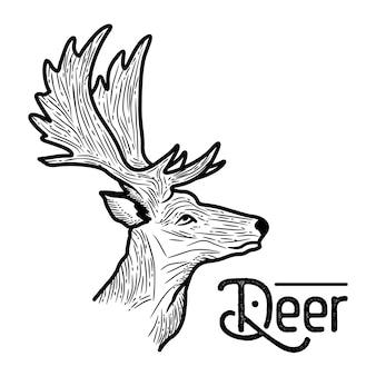 Deer hand getrokken stijl