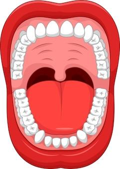Delen van menselijke mond