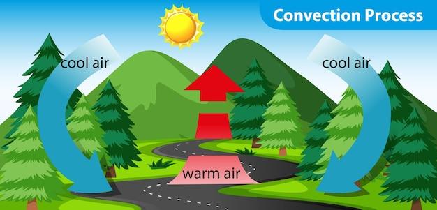Diagram met het convectieproces