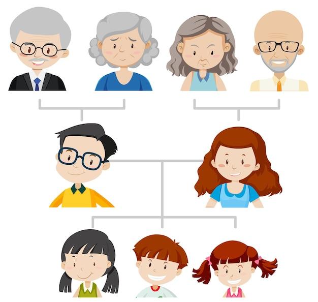 Diagram met stamboom van drie generaties